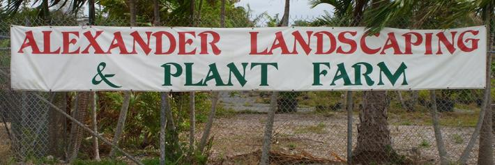 Native Plant Nursery In Broward County